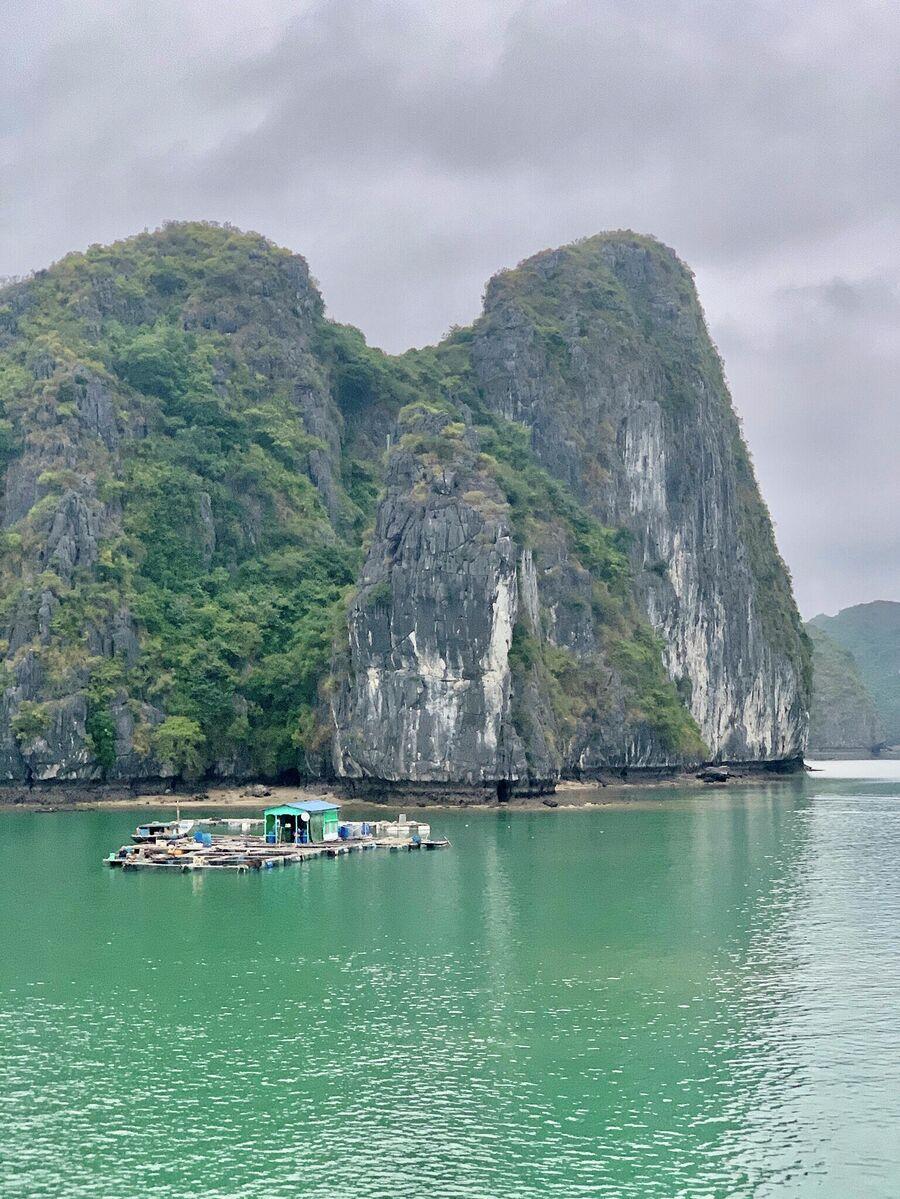 Рыбаки в бухте Ха Лонг