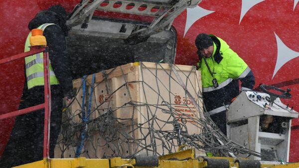 Сотрудники аэропорта во время транспортировки дальневосточного леопарда Leo 131M на борт самолета во Владивостоке