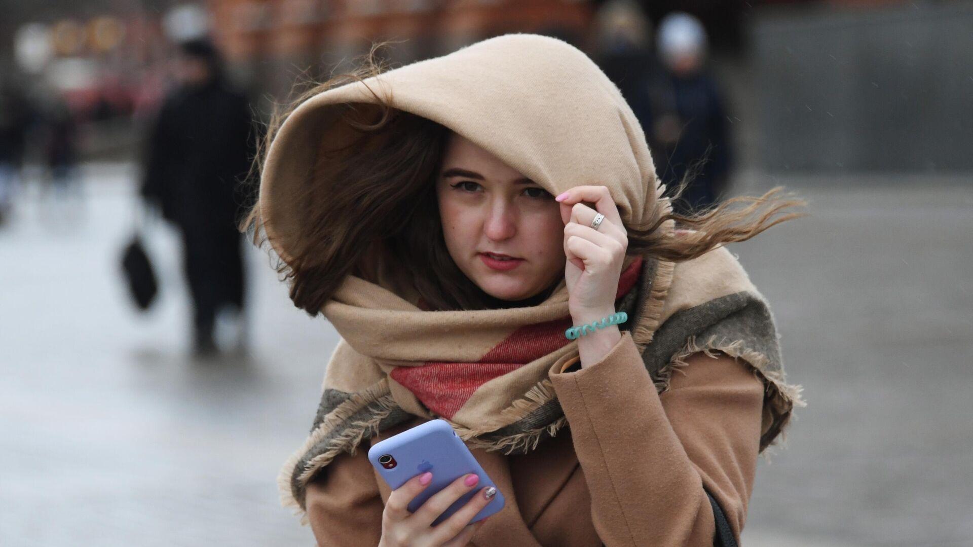 Сильный ветер в Москве повалил 21 дерево за минувшие сутки