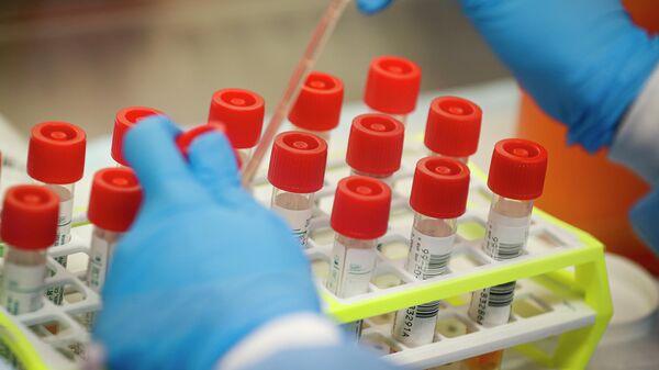 Лаборатория, проводящая тестирование на коронавирус