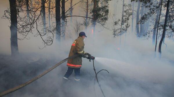 Сотрудник пожарной охраны во время тушения пожара в зоне отчуждения Чернобыльской АЭС
