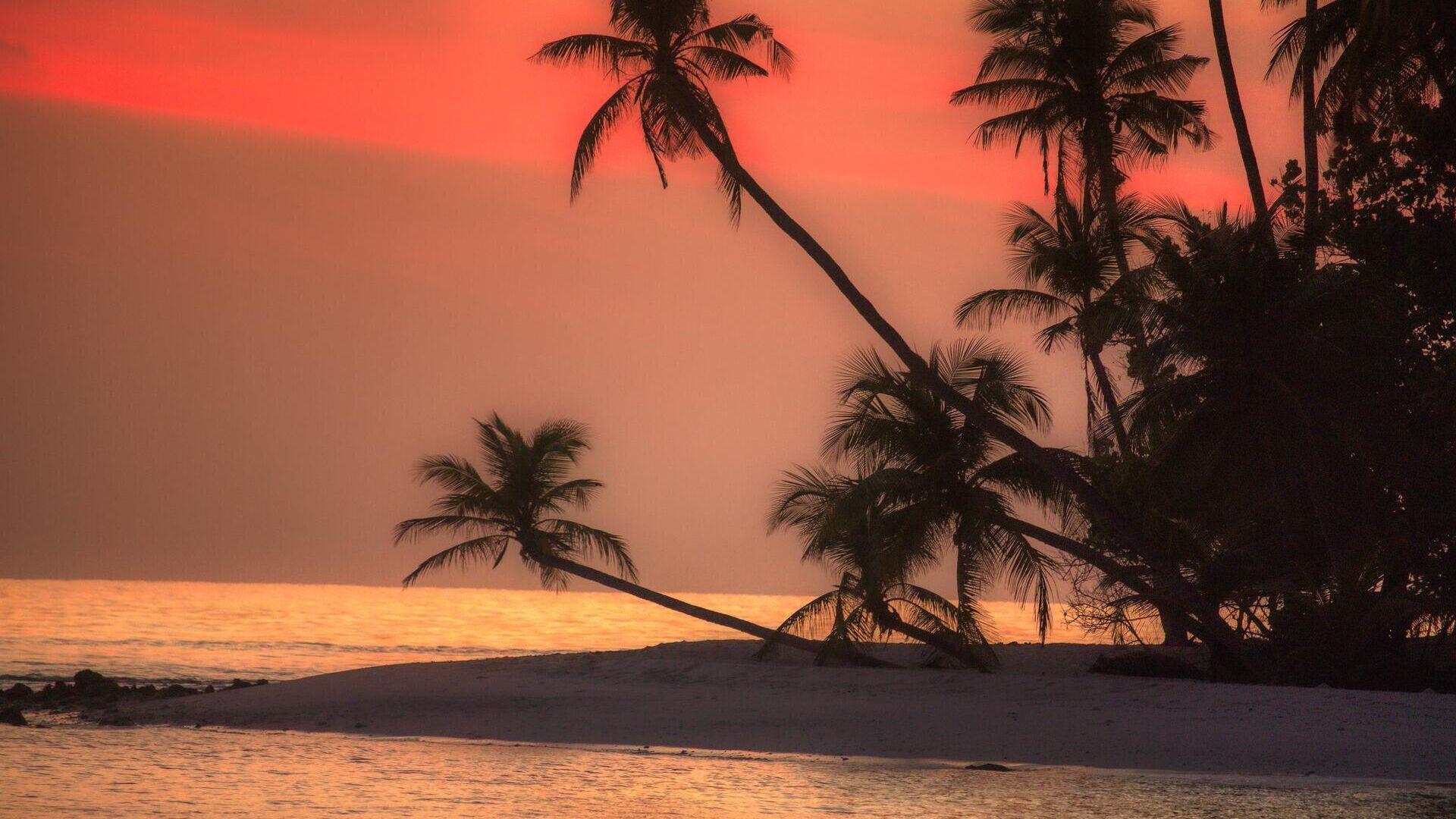 Восход солнца на одном из Мальдивских островов  - РИА Новости, 1920, 02.01.2021