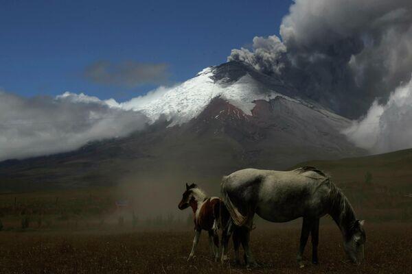 Вулкан Котопахи в Эквадоре