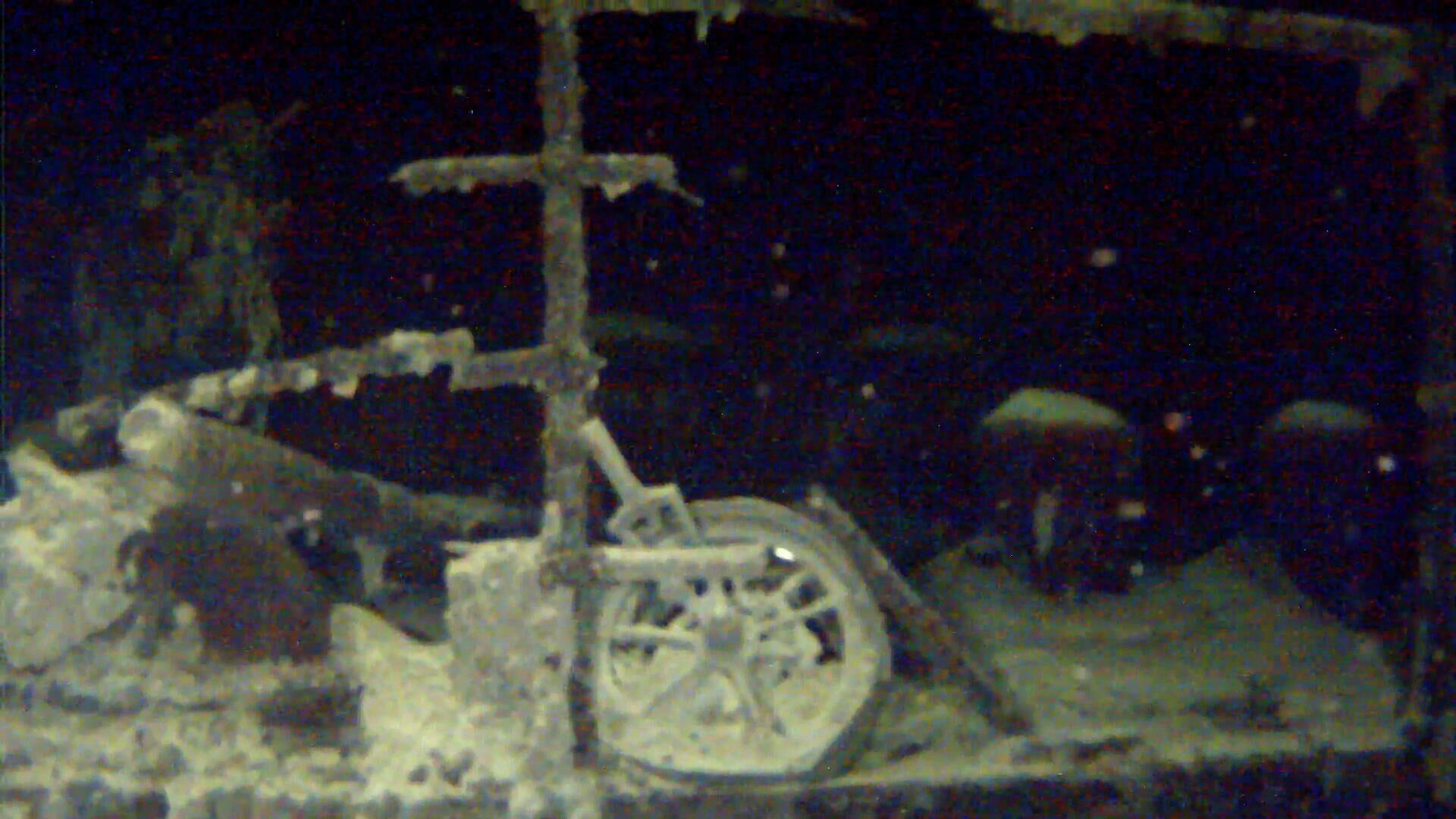 Потопленный немцами в годы Великой Отечественной войны советский теплоход Армения - РИА Новости, 1920, 09.05.2020