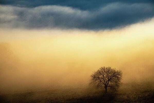 Работа фотографа Benjain Waldmann, победителя в категории Пейзажи в фотоконкурсе GDT Nature Photographer of the Year 2020