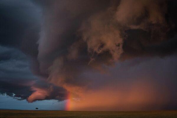 Работа фотографа Jose Fragozo в категории Пейзажи в фотоконкурсе GDT Nature Photographer of the Year 2020