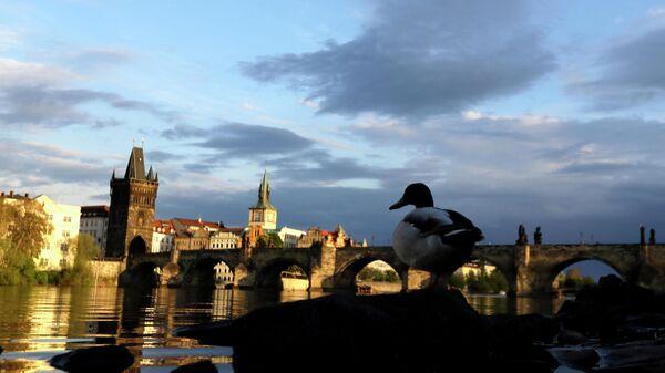 Карлов мост на реке Влатава в Праге