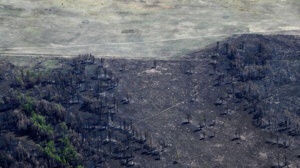 Последствия пожара в Читинском районе Забайкальского края