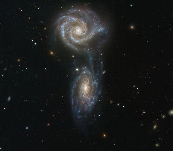 Спиральные взаимодействующие галактики NGC 5426 и NGC 5427