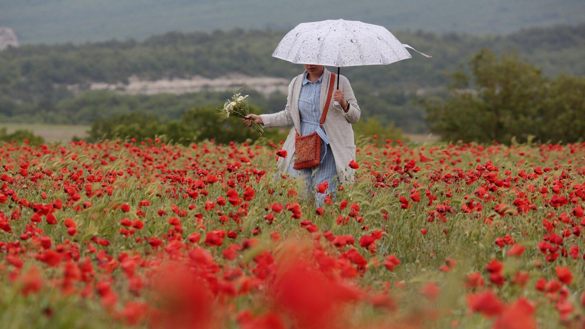 Девушка гуляет на маковом поле в Крыму - РИА Новости, 1920, 13.04.2021
