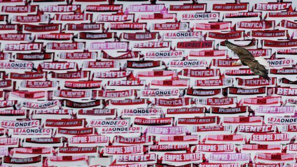 Талисман Бенфики орел Витторио пролетает над пустыми трибунами домашней арены клуба Эштадиу да Луж