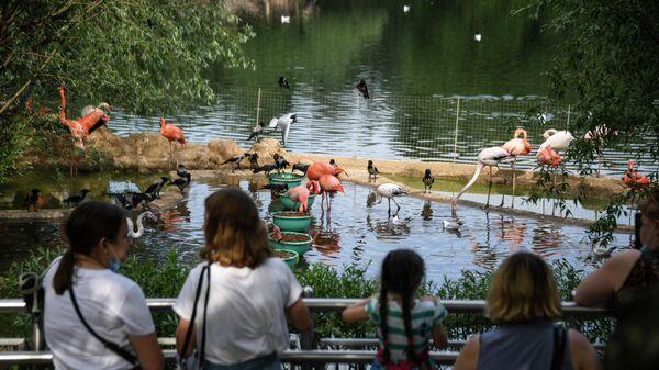 Посетители у вольера с птицами в Московском зоопарке
