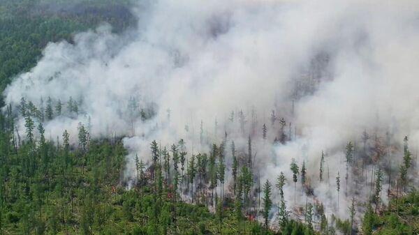 1574154309 0:72:1527:930 600x0 80 0 0 e9574d4f1c33d1039ba7e42af46654b7 - СК начал проверки из-за лесных пожаров в двух районах Югры