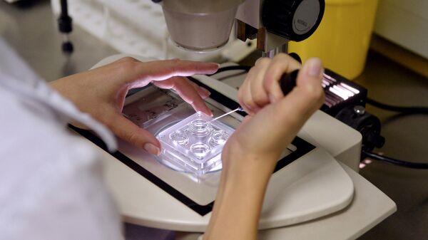 Сотрудница лаборатории во время работы