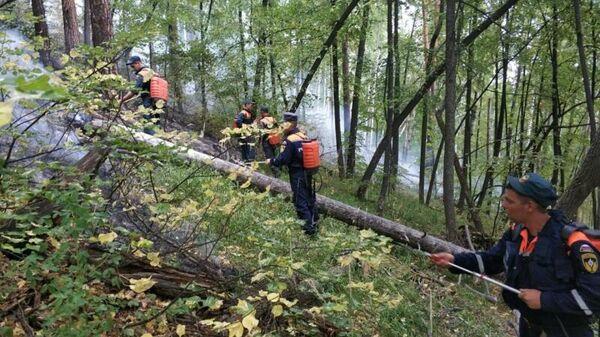 Тушение лесного пожара в районе озера Тургояк в Челябинской области