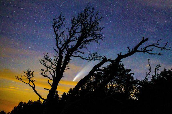 Комета NeoWise в небе над Краснодарским краем