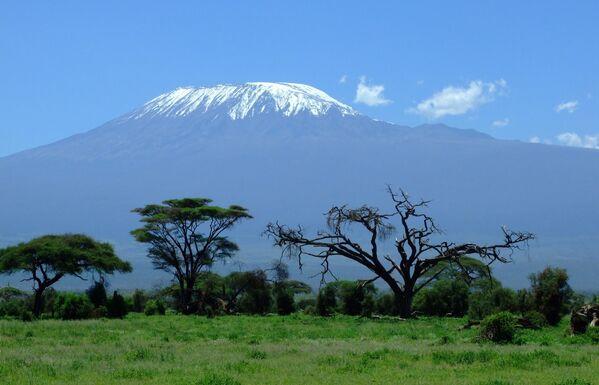 Вид на Килиманджаро в Танзании