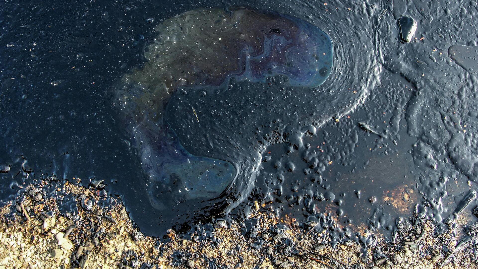 На берегу Оби обнаружили пятно от разлива нефтепродуктов