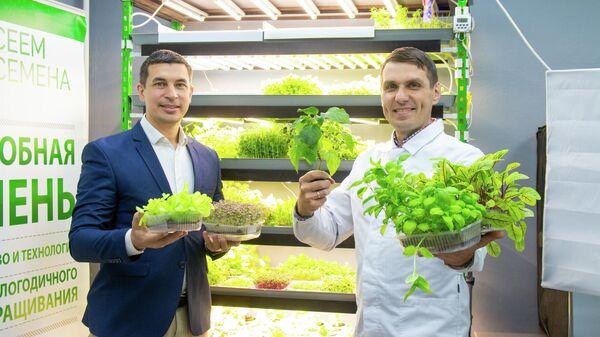 Предприниматели из Кирова Павел Паходин и Антон Бельтюков