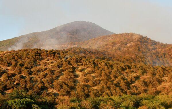 Дым от лесных пожаров в заповеднике Утриш недалеко от Анапы