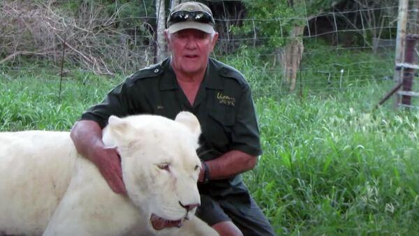 Две львицы случайно растерзали спасшего их владельца