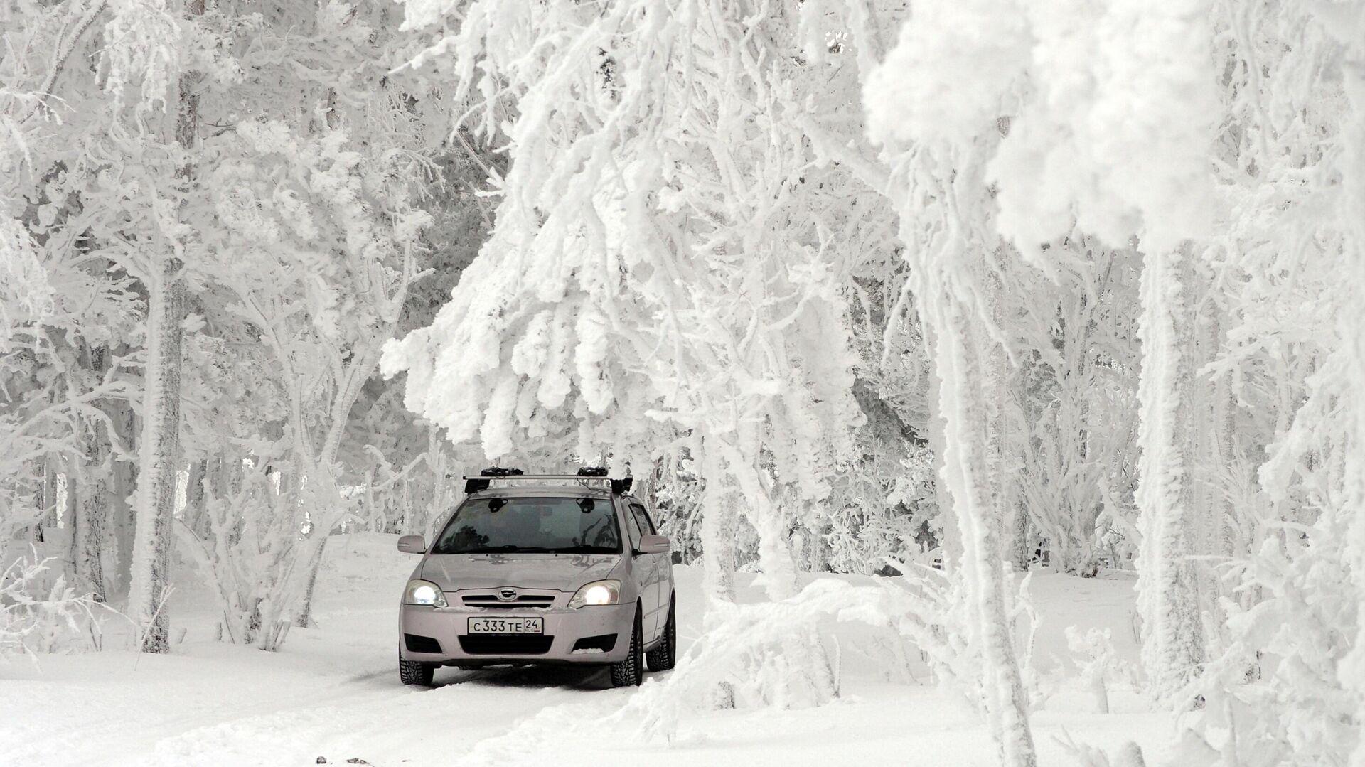 Машина едет по заснеженному лесу на берегу реки Енисей - РИА Новости, 1920, 30.11.2020