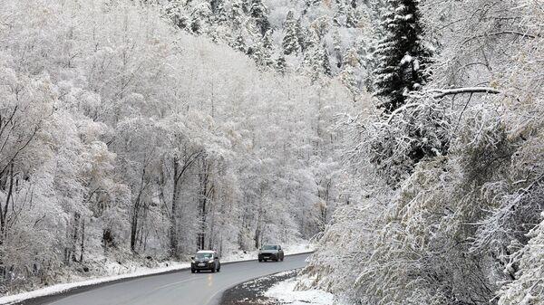 Автомобили едут по автотрассе после первого снегопада