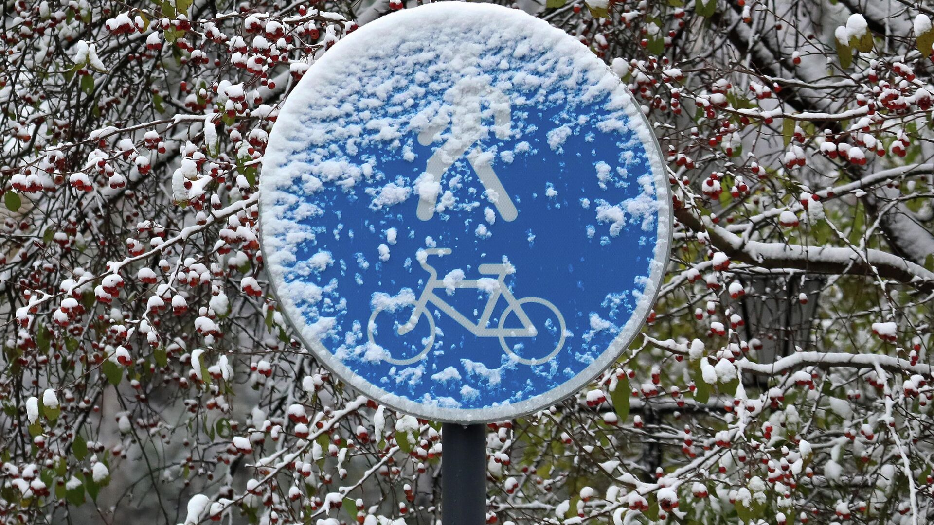 Дорожный знак после первого снегопада - РИА Новости, 1920, 14.10.2020