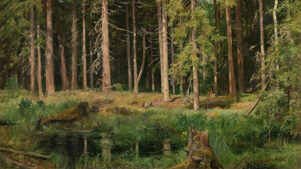 Иван Шишкин Сосновый лес