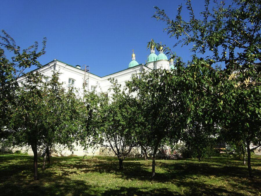 Персиковый сад в астраханском Кремле
