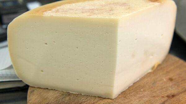 Готовый сыр на сырном производстве