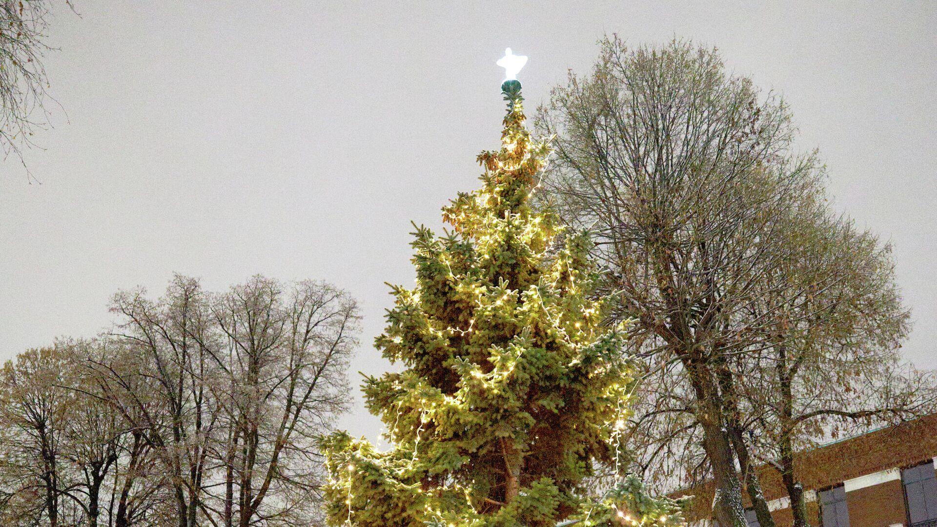 В посольстве Британии рассказали о рождественской елке в резиденции посла - РИА Новости, 1920, 04.12.2020