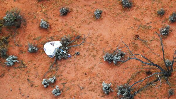 Капсула с грунтом, собранным космическим зондом Хаябуса-2 на астероиде Рюгу в Австралии