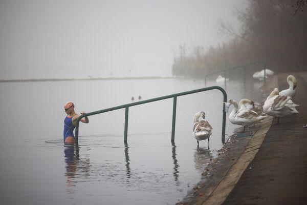 Женщина заходит в воду озера Серпентин в Гайд-парке