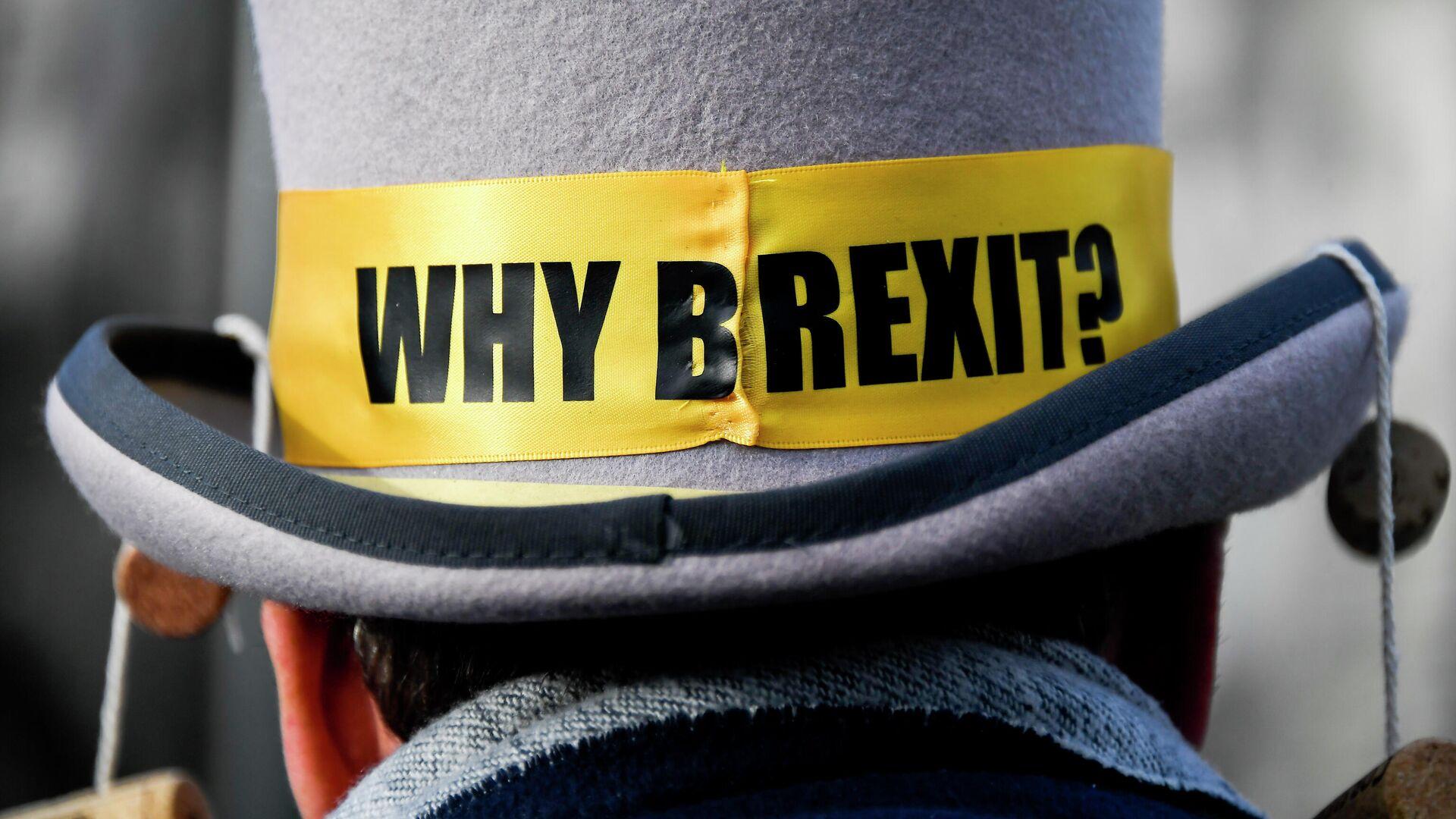 Демонстрант против Брексита у Вестминстерского дворца в Лондоне. 14 декабря 2020 - РИА Новости, 1920, 23.12.2020