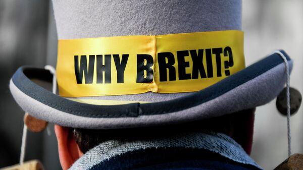 Демонстрант против Брексита у Вестминстерского дворца в Лондоне. 14 декабря 2020