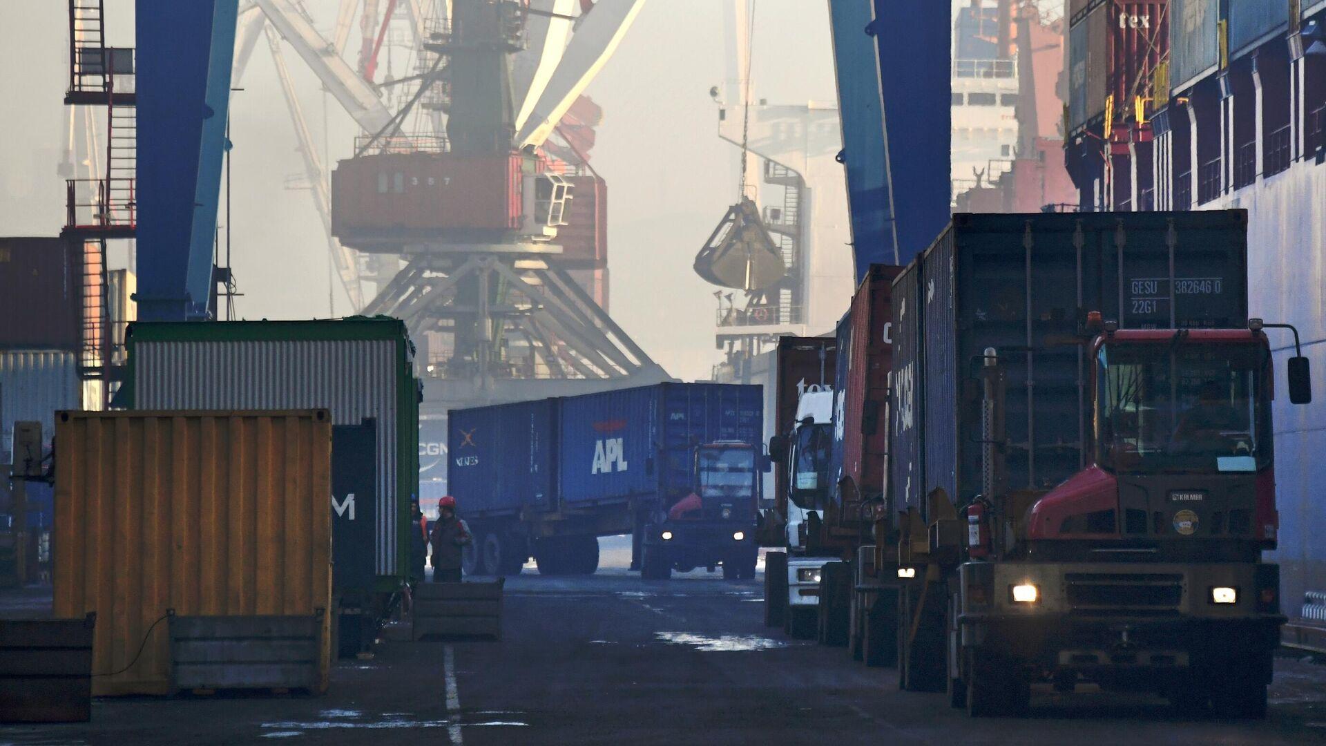 Выгрузка контейнеров с судна в контейнерном терминале Владивостокского морского порта - РИА Новости, 1920, 27.01.2021