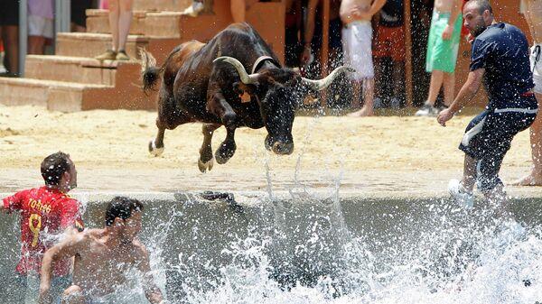 Бык прыгает в море во время фестиваля Быки в море в Дении, Испания