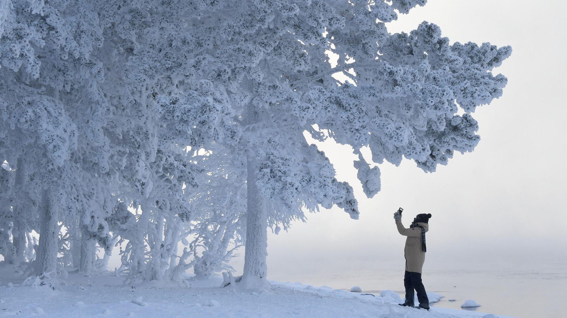 Женщина снимает на смартфон деревья в лесу на берегу Енисея в Красноярском крае в 30-градусный мороз - РИА Новости, 1920, 31.12.2020
