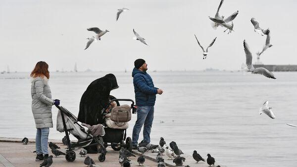 Люди кормят чаек на набережной в Севастополе