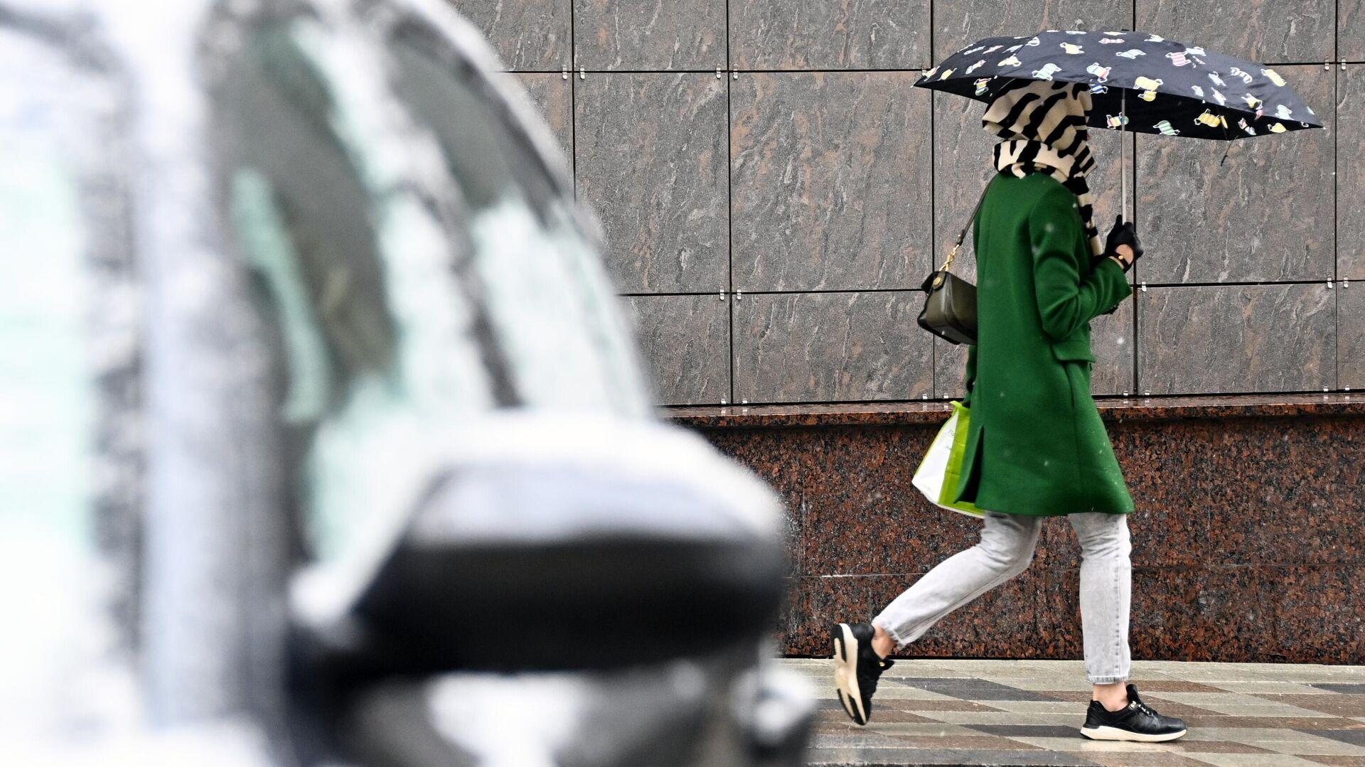 В Москве за сутки выпала почти треть месячной нормы осадков