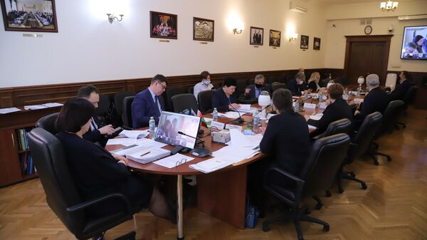Участники заседания Комиссии Парламентского собрания по социальной и молодежной политике, науке, культуре и гуманитарным вопросам