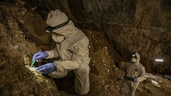 Участники исследования отбирают образцы пещерных отложений на ДНК
