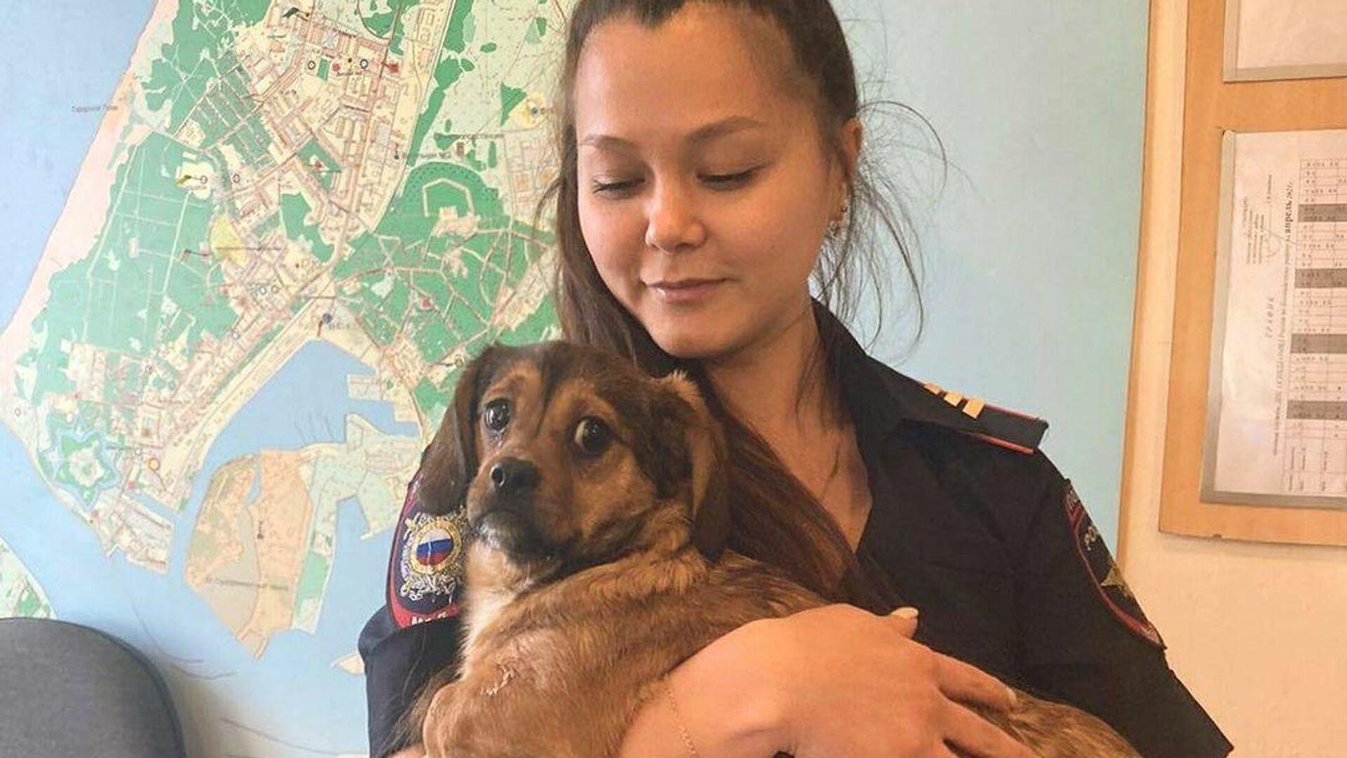 В Калининграде спасли щенков, выброшенных в мусорный контейнер