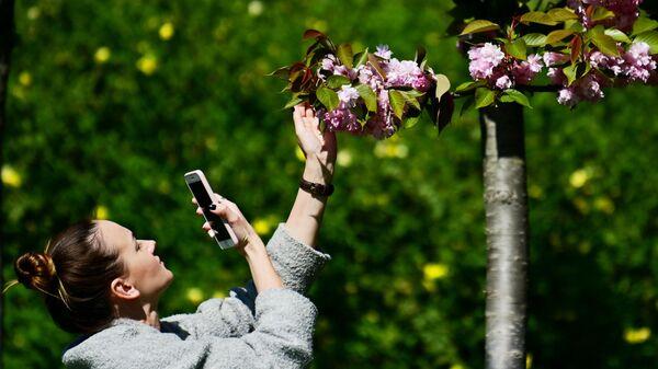 Девушка фотографирует цветы черешни на аллее Черешневый сад в Сочи