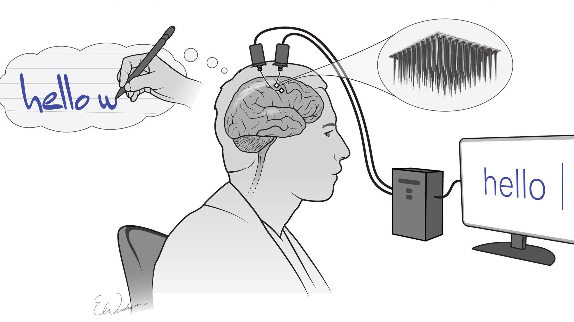 Предложена новая гипотеза, объясняющая природу сновидений