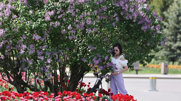 Девушка фотографируется у куста сирени на ВДНХ в Москве в жаркую погоду