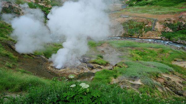 Источник Аверий в Долине  Гейзеров в Кроноцком заповеднике