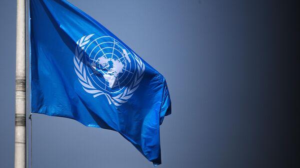 Флаг ООН на территории Дворца мира в Гааге
