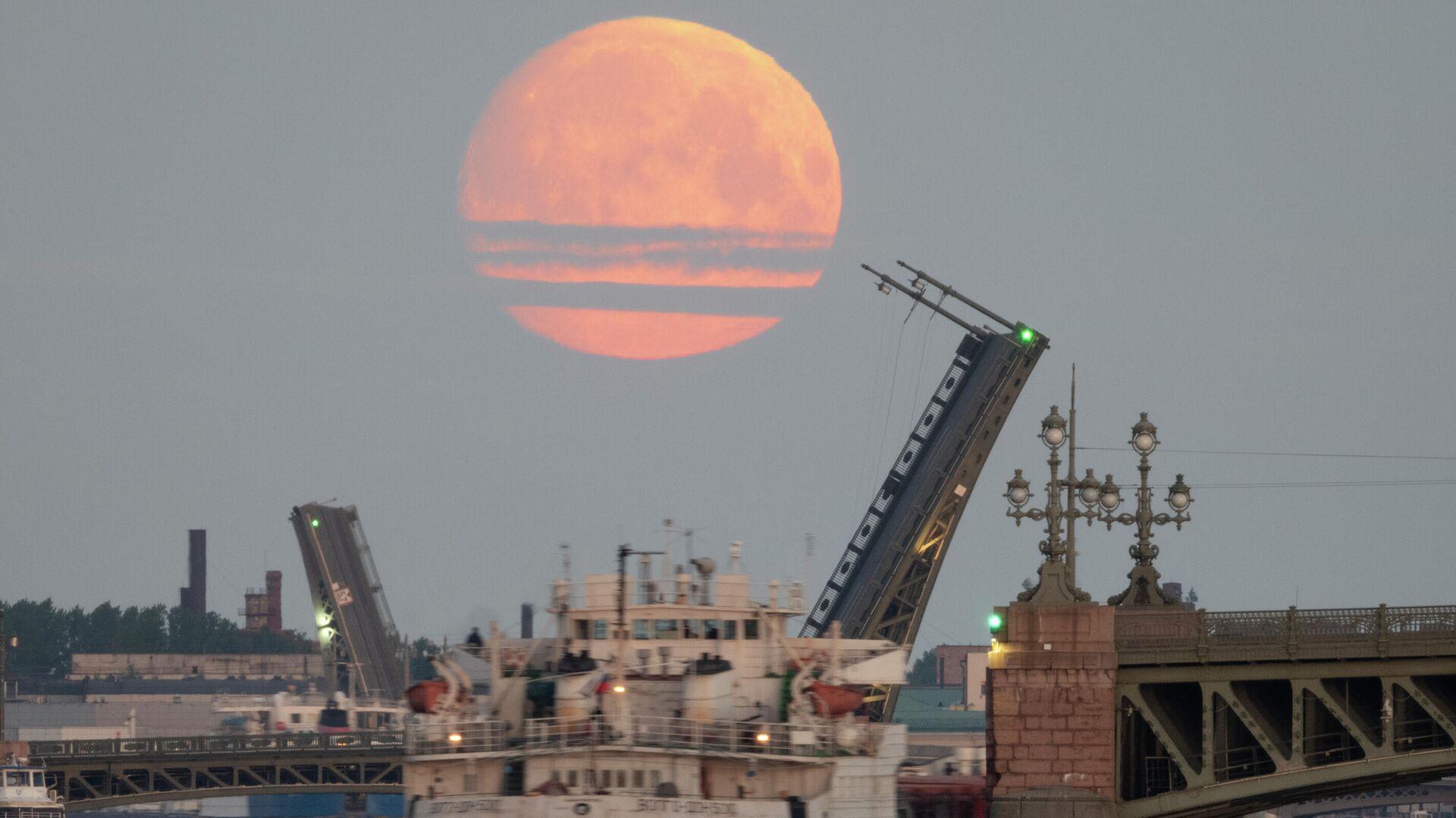 Луна над Санкт-Петербургом. 25 мая 2021 - РИА Новости, 1920, 19.06.2021